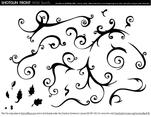 Wild Swirls