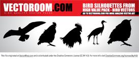 Vectoroom Free Vector #1 - Birds
