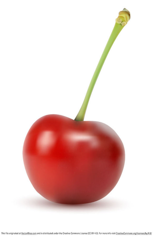Vector Cherry