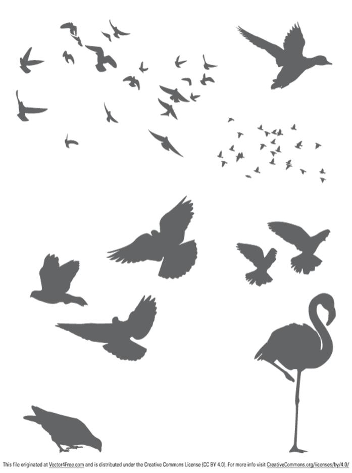 Free Vector Birds