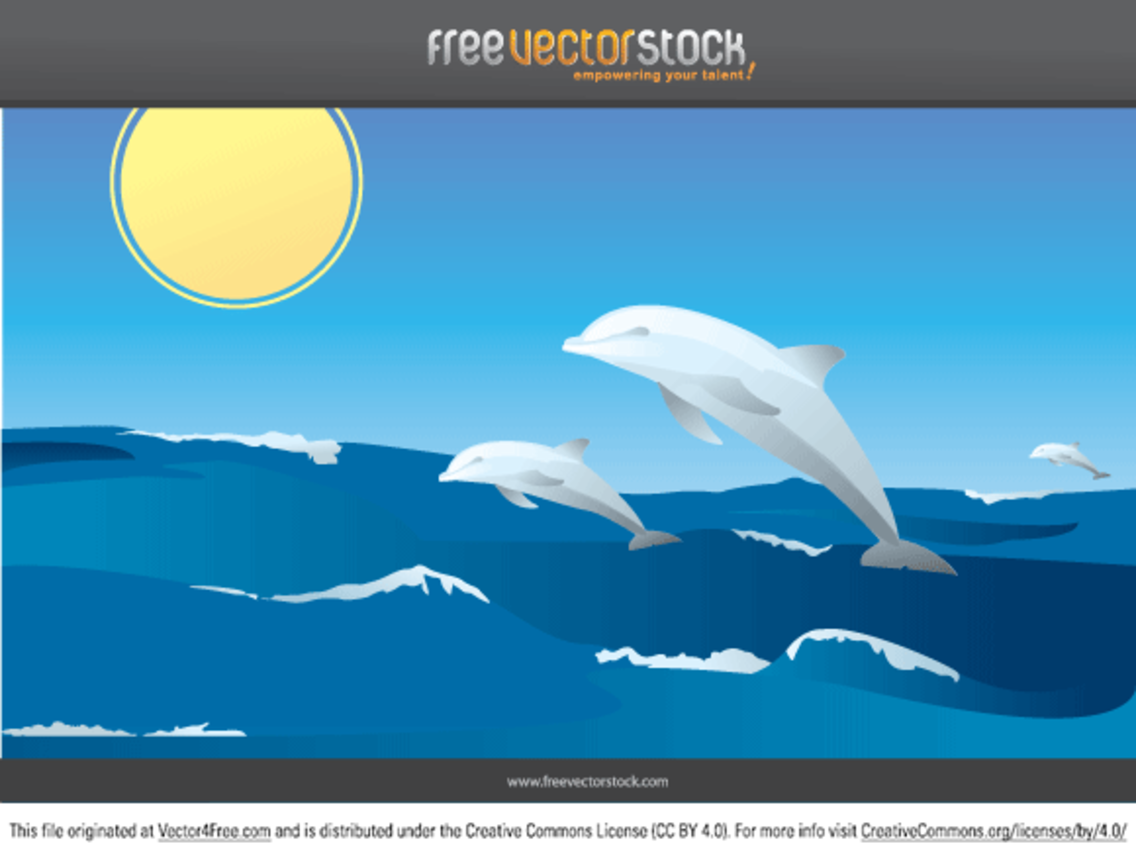 Vector Dolphins