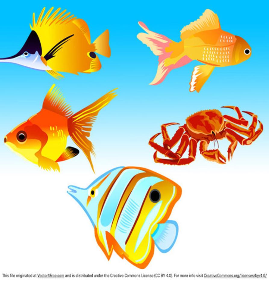 Free Vector Fish Icons