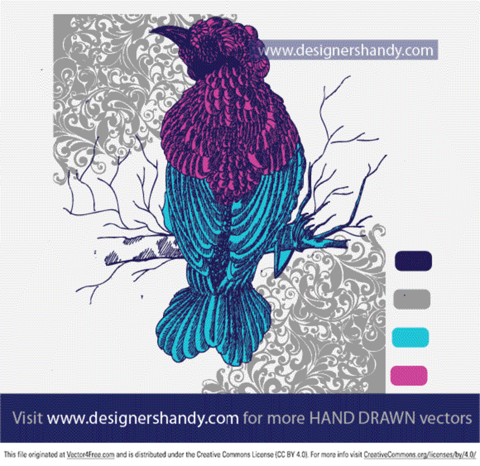 Hand Drawn Decorative Bird