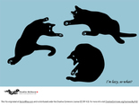 Silhouettes of lazy postured cats