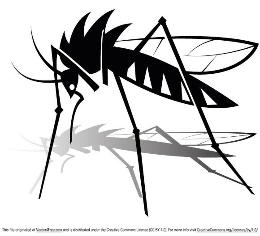 Free Mosquito Vector Graphics