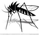 Free Mosquito Vector Graphics