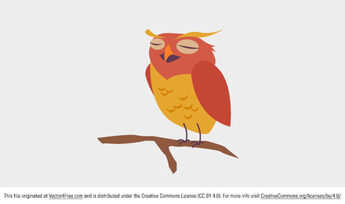 Cute Owl Vector