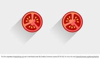 Tomato Vector Slice