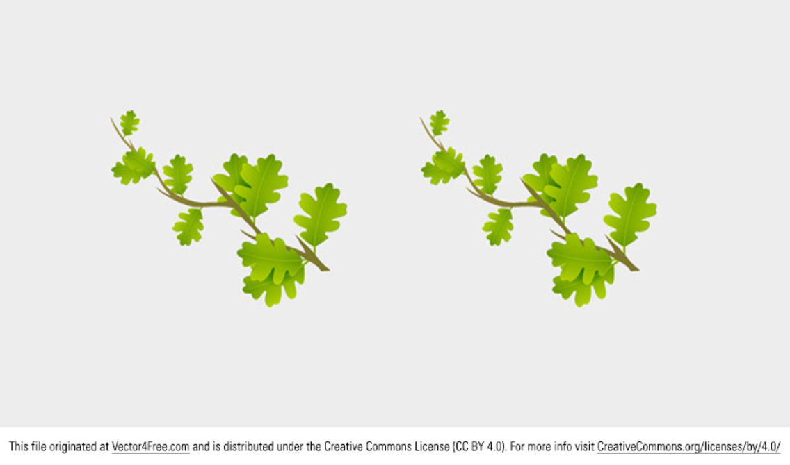 Small Branch Leaves Vector