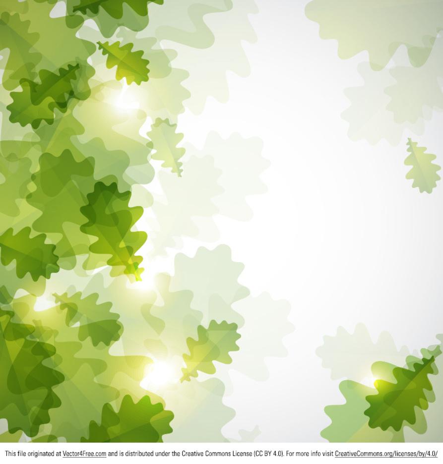 Bokeh Green Leaves
