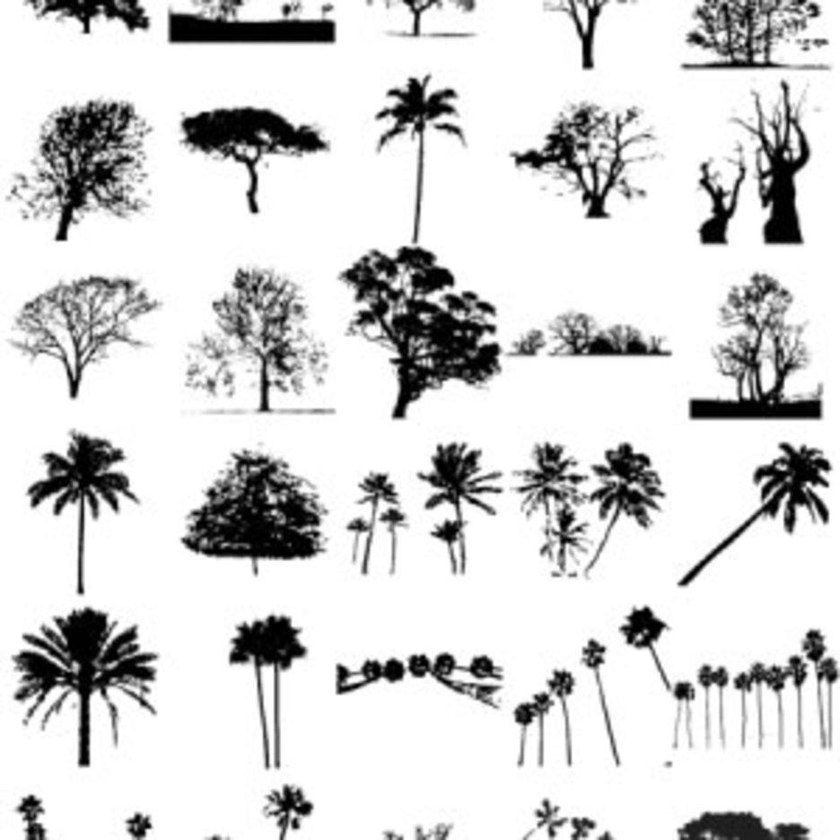 30 Free Tree Silhouette