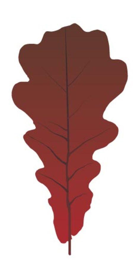 Old Leaf Vector