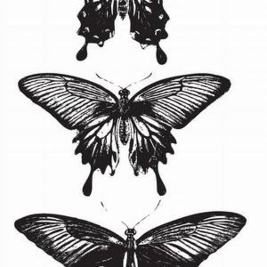 3 Vector Butterflies