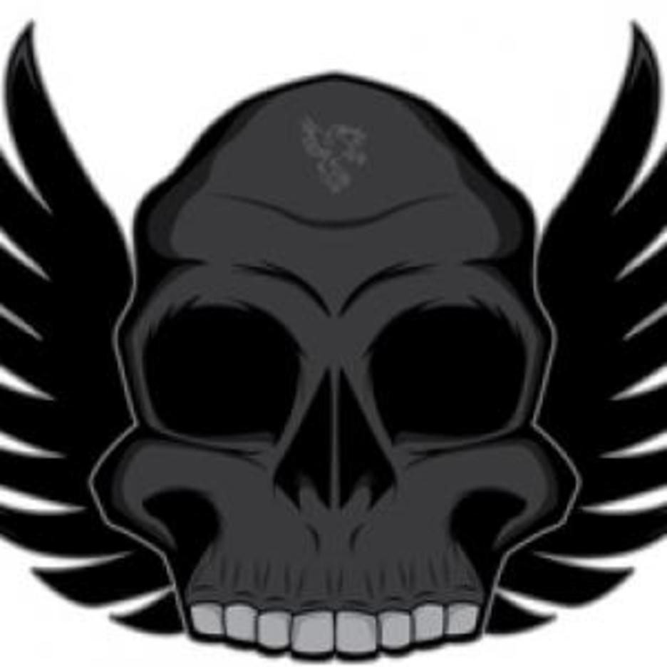 Free Series Winged Skull Vector