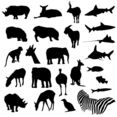 Free Vector Pack Safari And Zoo Animals