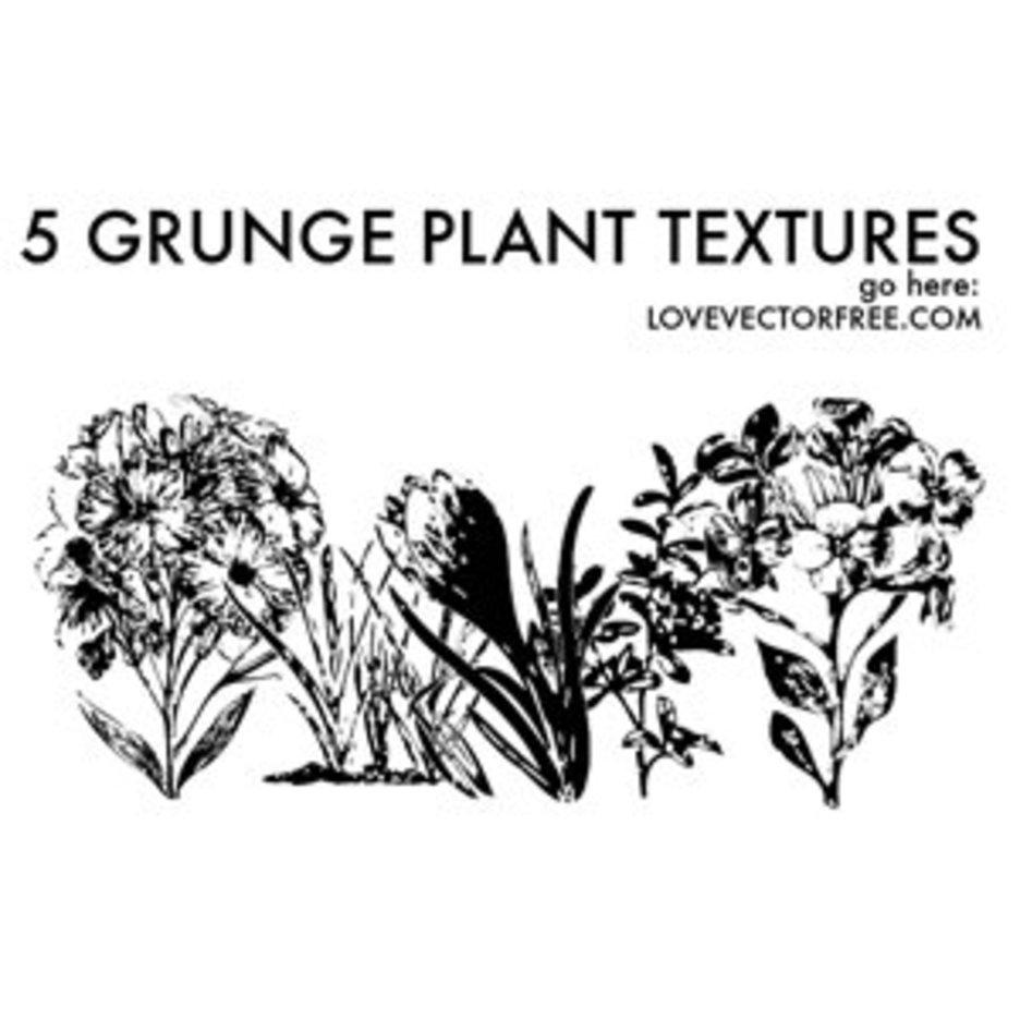 5 Grunge Plant Textures