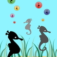 Seahorse Vector Collection