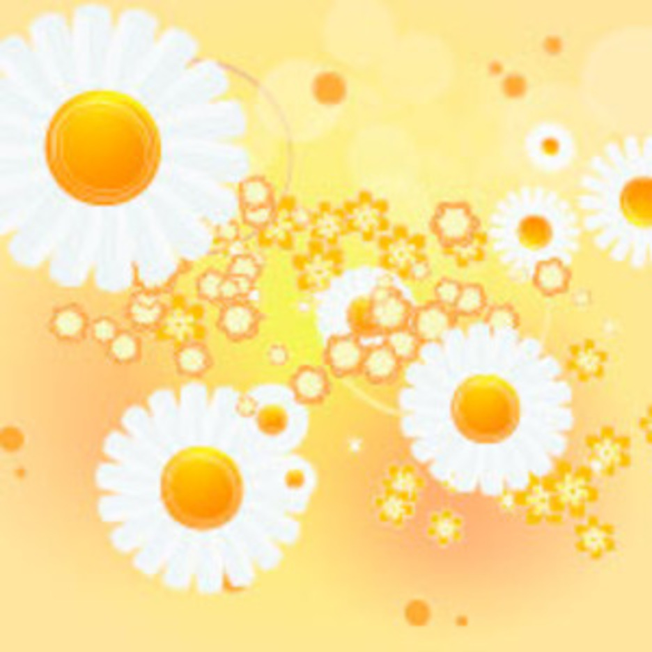Flower In Orange Vector Background