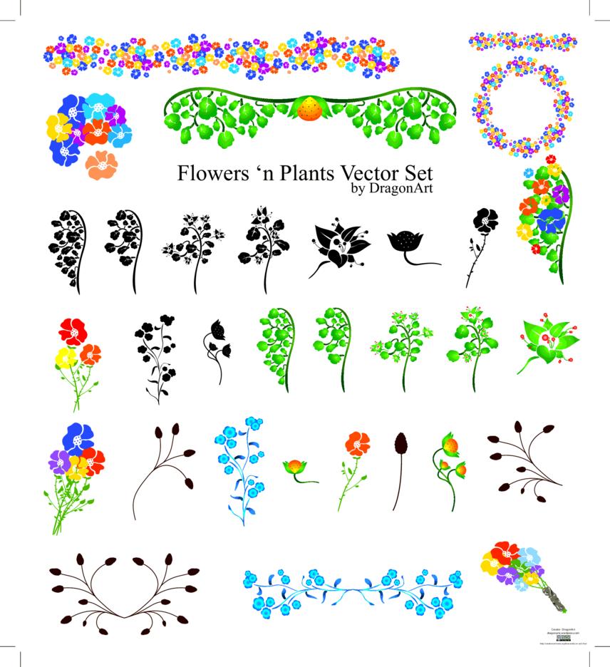 Flowers n Plants