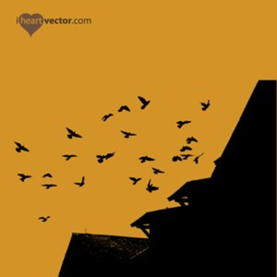 Flock Of Birds And Roof Vector
