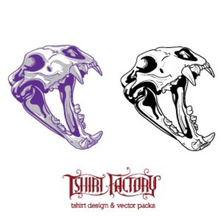 Animal Skull 1