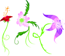 Three Floral Vectors