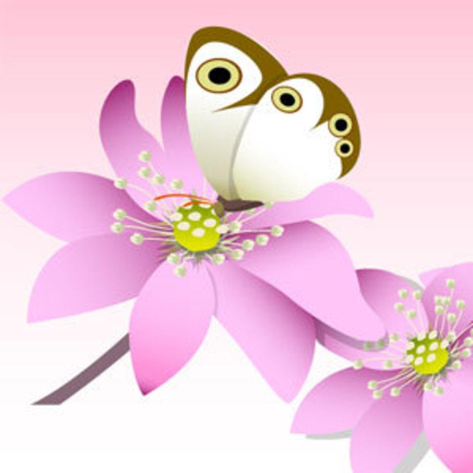 Flower Of Seven Color