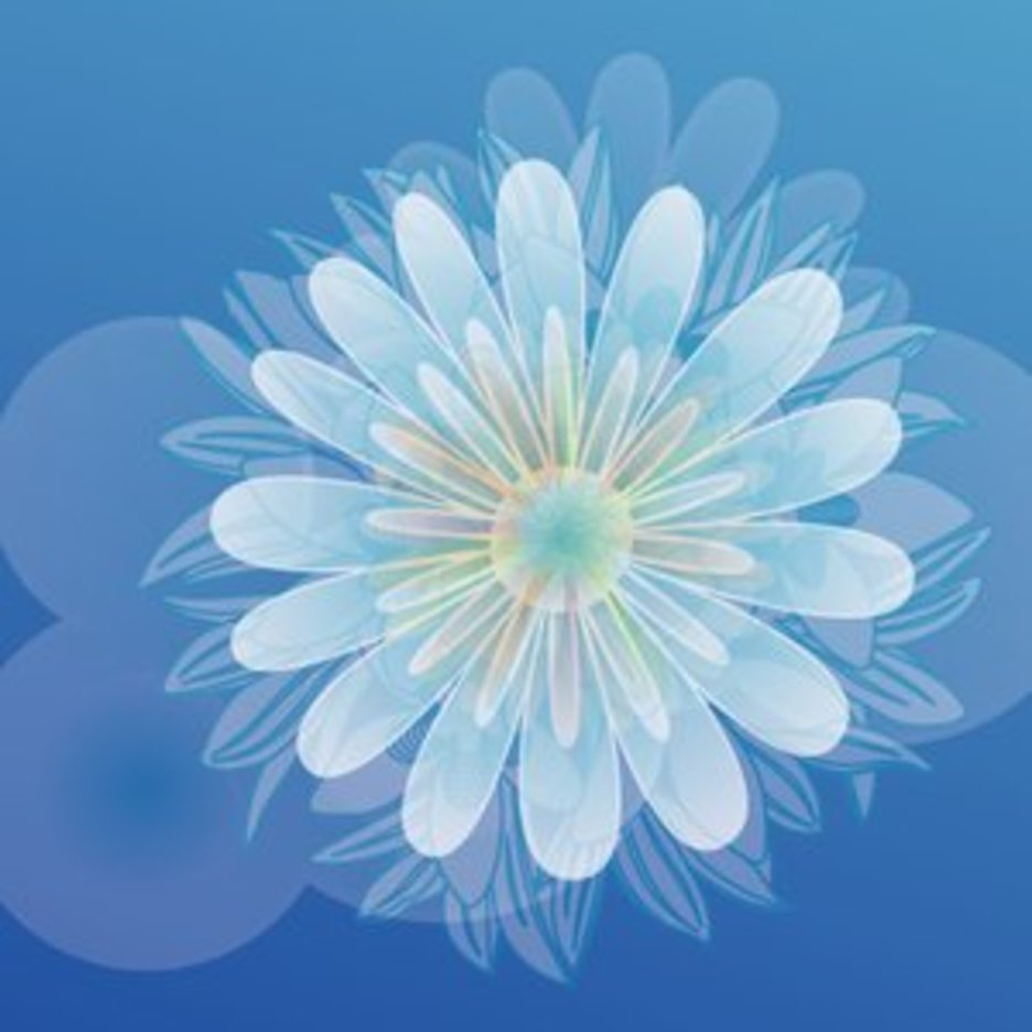 Colorful Flower Vector Graphique 2