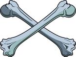 Bones Vector