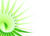 Green Abstract Flower Vector Background