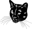 Balck Cat Head Vector
