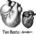 Old Medical Illustrations Of The Heart