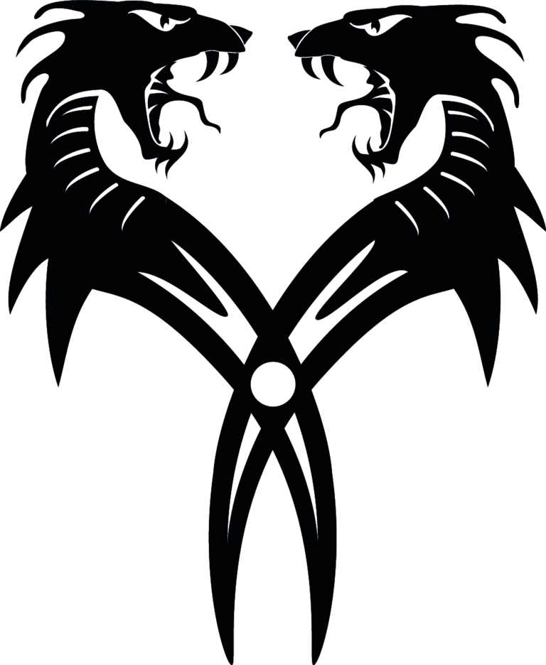 Dragon Twins Vector