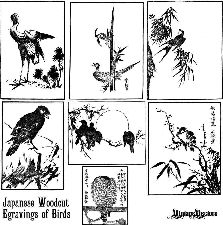 Japanese Woodcut Engravings Of Birds