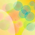 Bokeh Abstract Orange Vector Design
