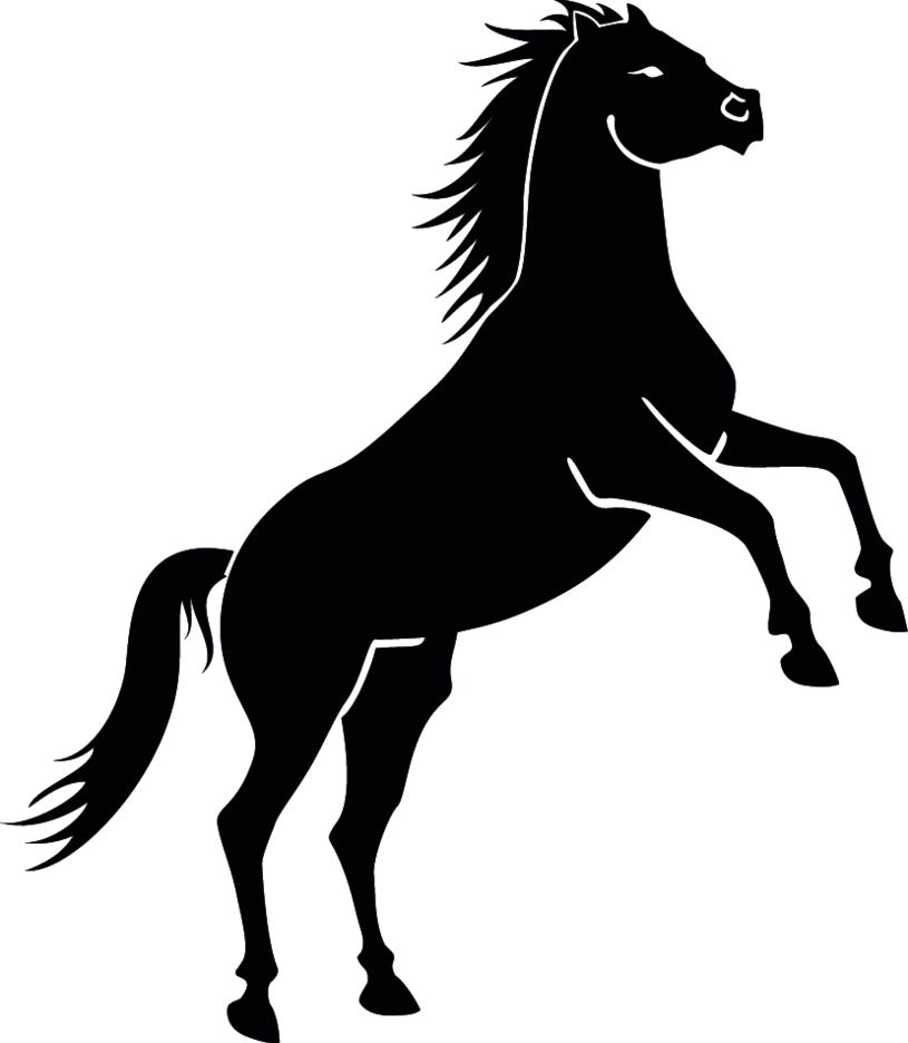Black Wild Horse Vector