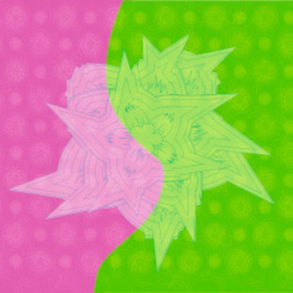 Flowers Design In Green & Red Vector