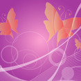 Butterfly Free Vector Background
