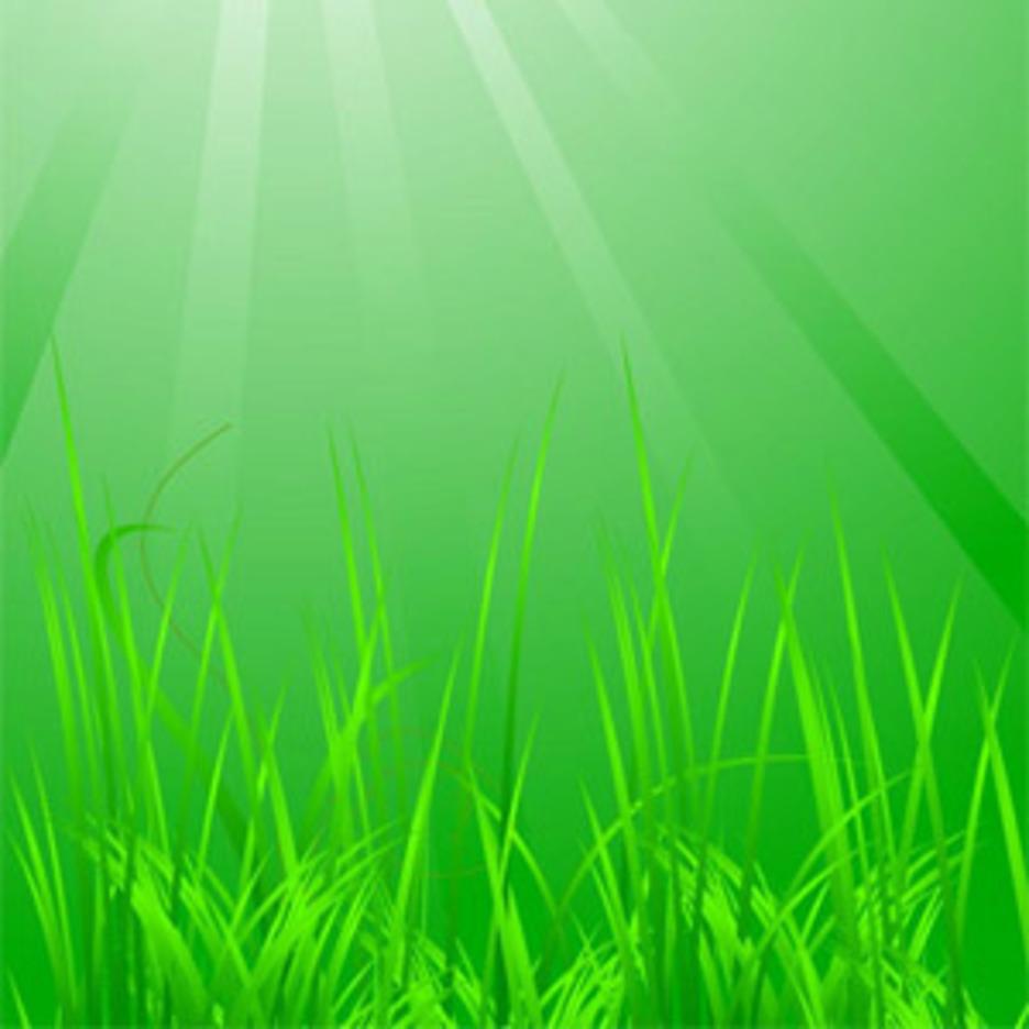 Cool Green Grass