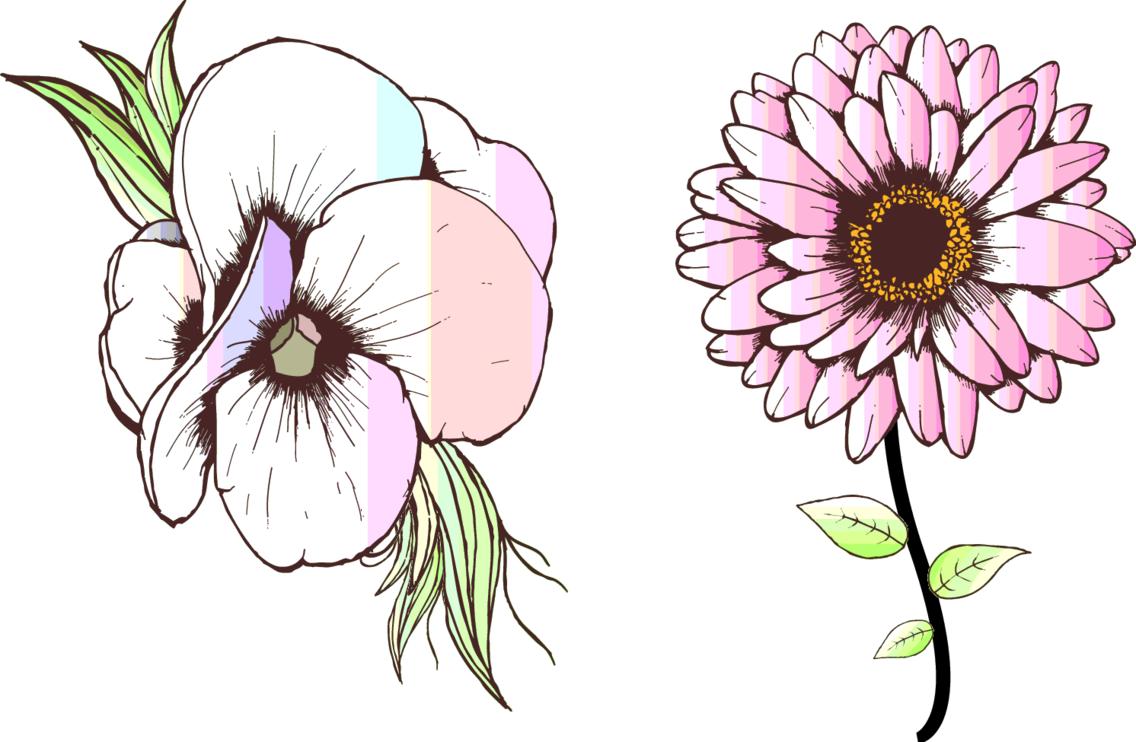 Hand Drawn Flower 11002