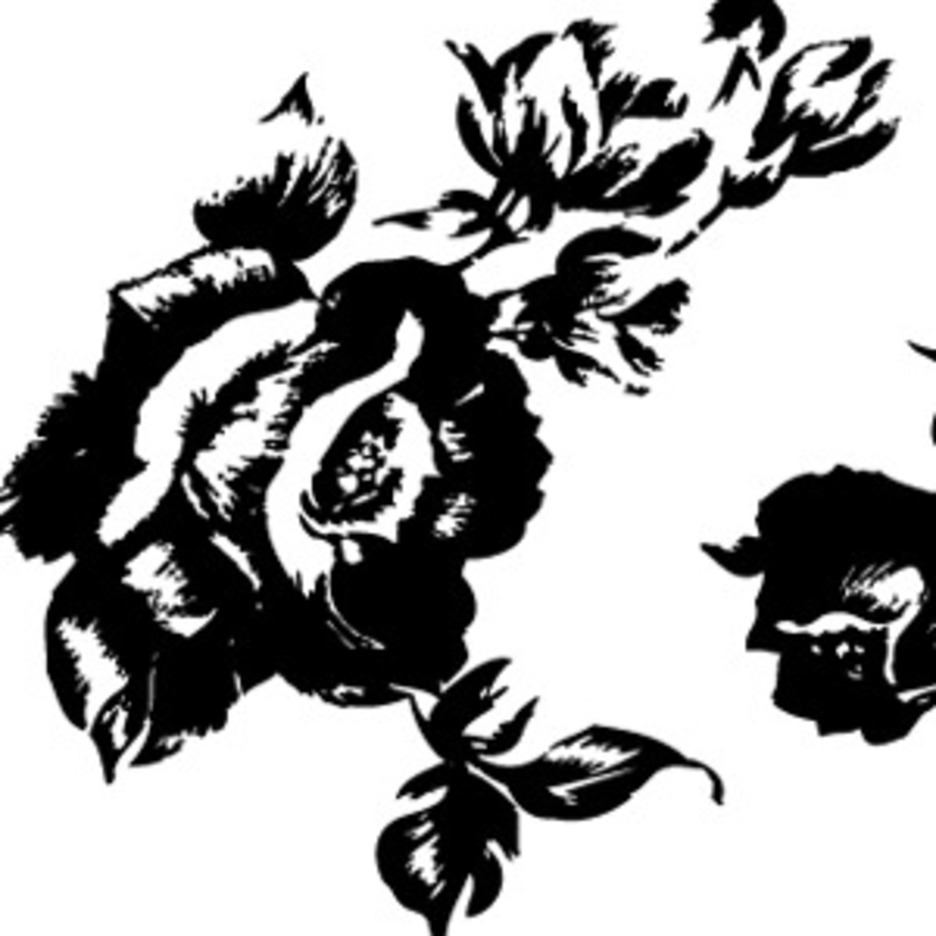 Free Flower Vector-6