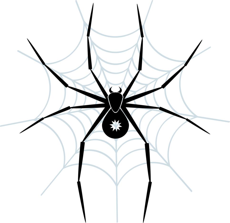 Spider Vector Art