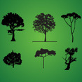 Tree Silhouette Pack