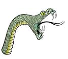 Snake Head Vector