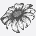 Free Hand Drawn Floral Vector Element