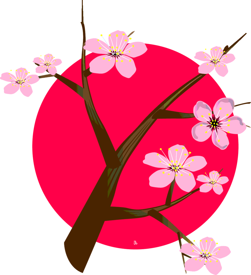 Cherry Blossom Tree For Japan
