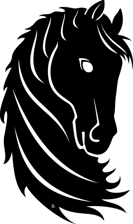 Black Horse Head Vector