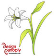 Free Easter Lily Vector Flower