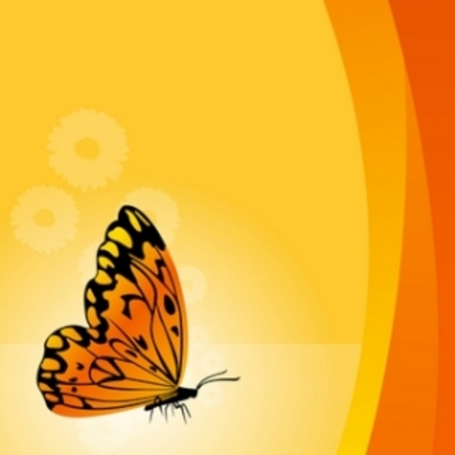 Vector Floral Background With Butterfly