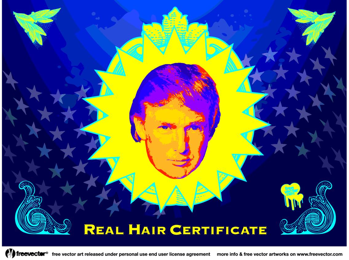 Donald Trump Hair Vector